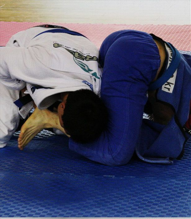 brazilian_jiu_jitsu__bjj_classes_mma_chennai_combatkinetics