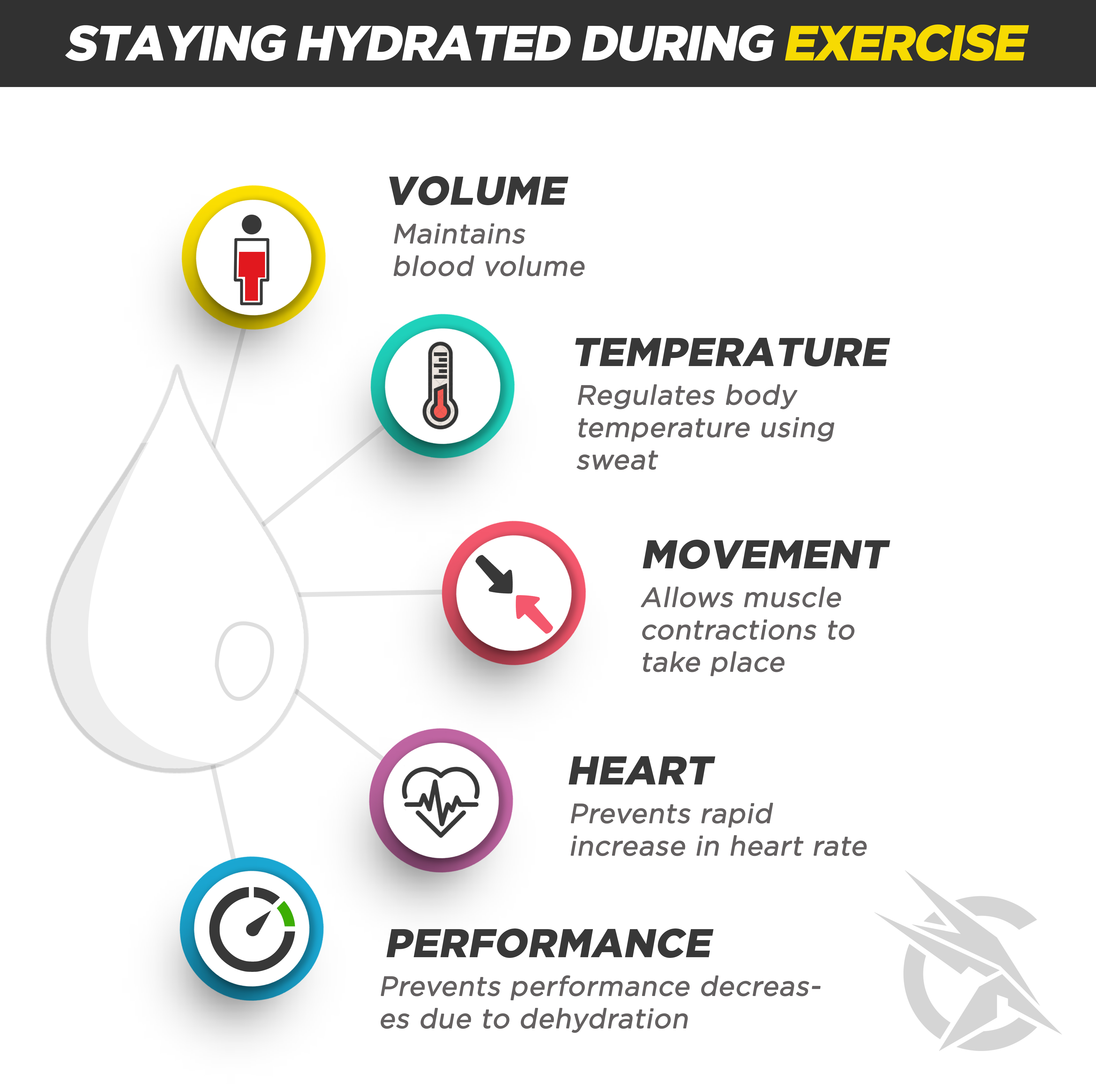 Hydration Blog Infographic